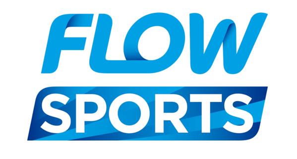 Logo Flow Sports