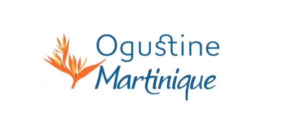 Lancement d'Ogustine, 1ère place de marché pour les entreprises martiniquaises de services à la personne
