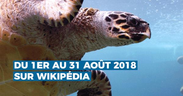 """""""Photographiez les Outre-mer"""", le premier concours photo ultra-marin sur Wikipédia"""