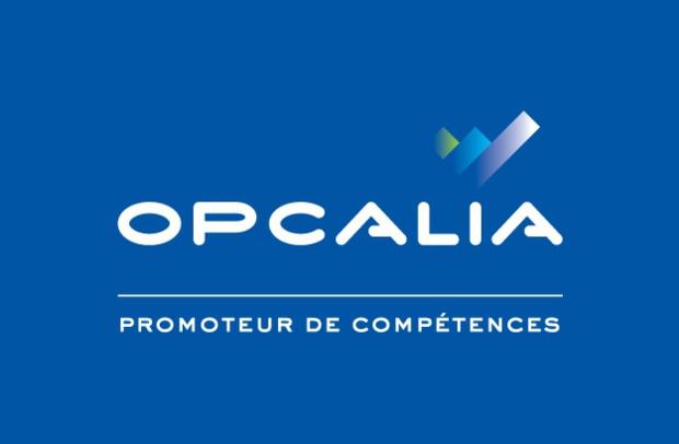Opcalia lance demain le dispositif Terre d'Emploi Martinique pour former les jeunes demandeurs d'emplois