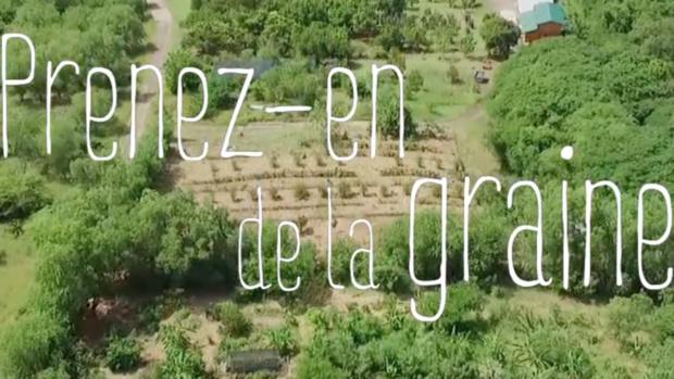 """""""Prenez-en de la graine !"""" le nouveau magazine découverte de Guadeloupe la 1ère"""