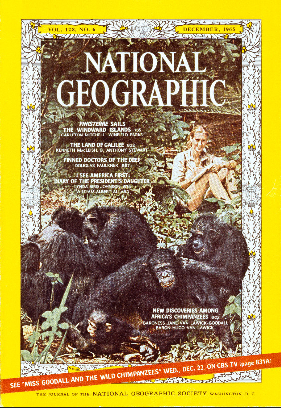 National Geographic annonce un nouveau documentaire dédié à Jane Goodall