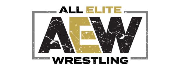 """TOONAMI diffuse le 1er juin le show de la ligue de catch AEW """"Double or Nothing"""""""