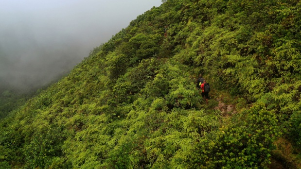La Guadeloupe à l'honneur le 16 Octobre sur la chaîne VOYAGE