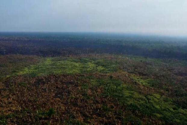 L'amazonie à l'honneur dans un documentaire inédit, écrit et raconté par Fabrice d'Almeida sur le Portail Outre-Mer La 1ère