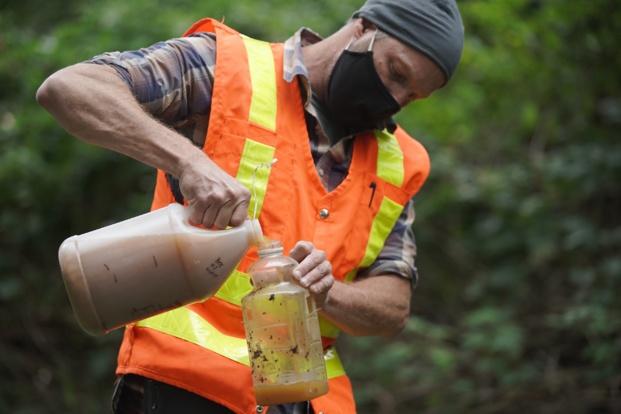 Enquête sur les frelons géants, le 20 août prochain sur Discovery Channel
