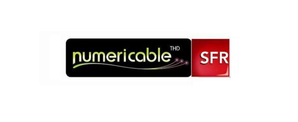 Rachat de SFR par Numericable: Ericka Bareigts interpelle Arnaud Montebourg