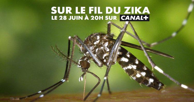 Inédit: Un documentaire consacré au Zika en Outre-Mer, le 28 juin sur Canal+