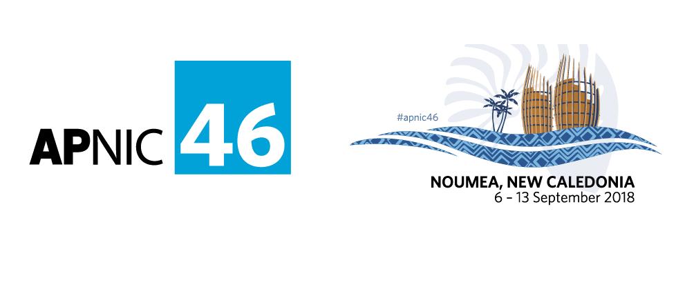 L'inter-connectivité et la sécurité du réseau dans le Pacifique au programme de l'APNIC 46