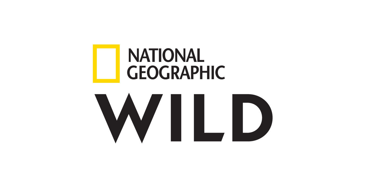 Nat Geo Wild devient à partir du 1er février National Geographic Wild et fait évoluer son identité graphique