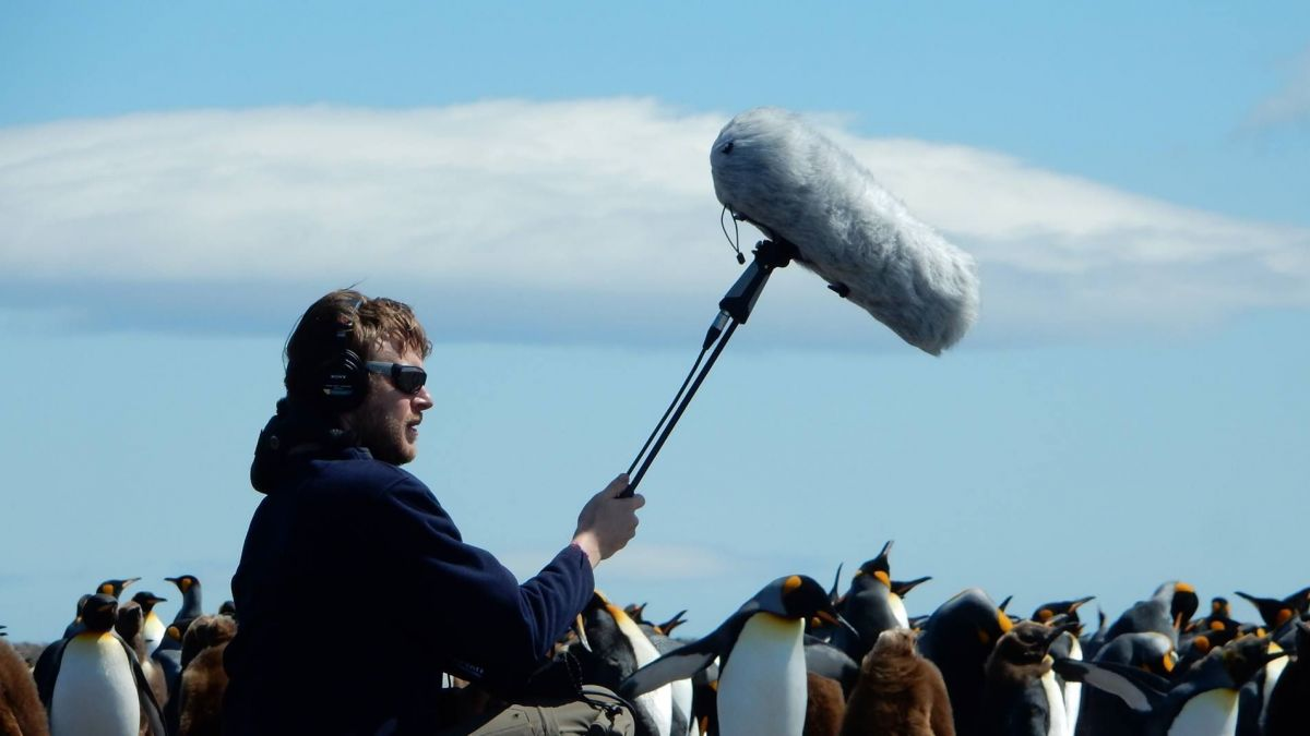 La Réunion: Concert hommage Julien Gauthier et l'Orchestre de la Région Réunion, le 2 novembre au TÉAT Plein Air