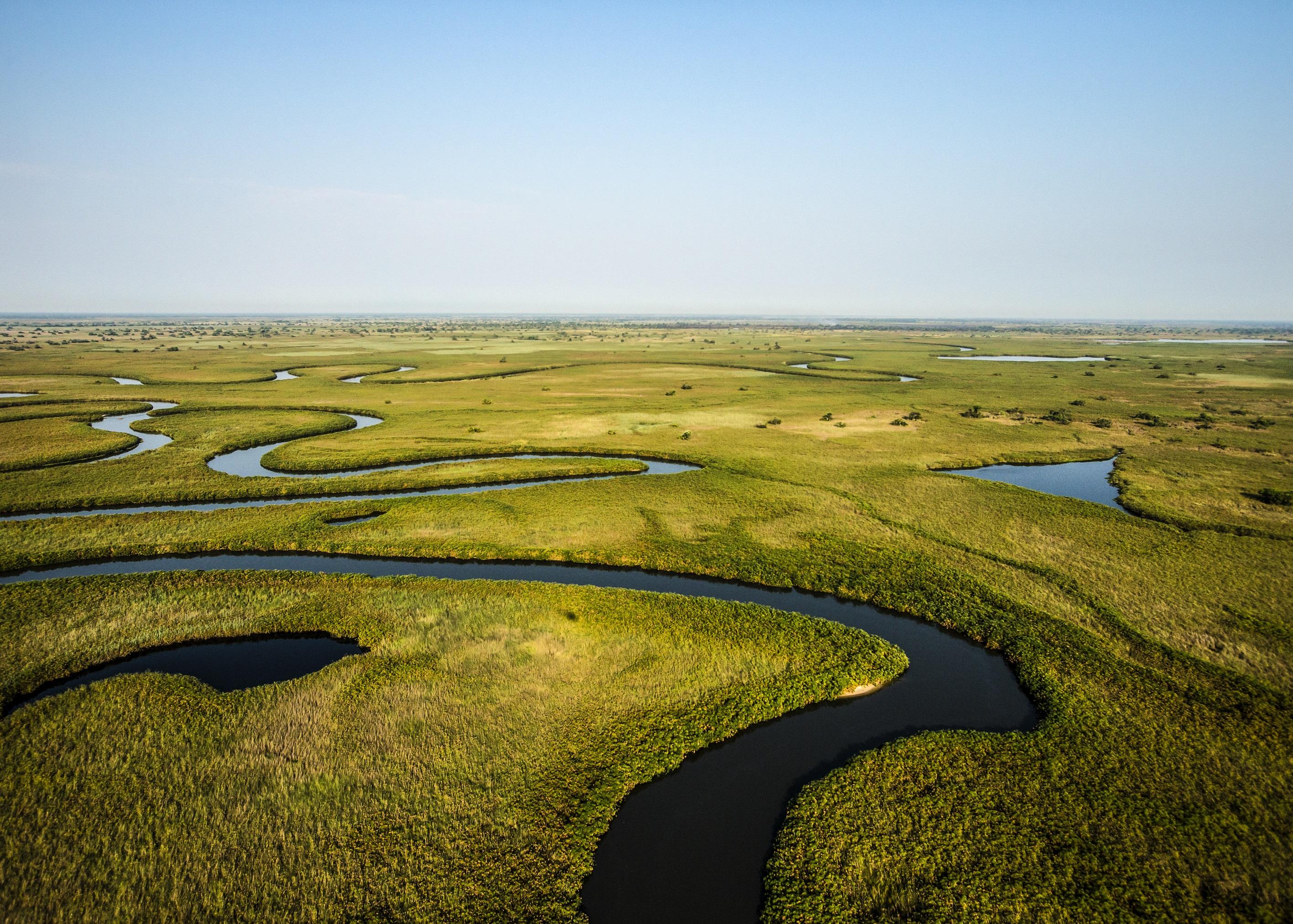 Le plus grand fleuve du monde, l'Okavango, à l'honneur le 15 avril sur National Geographic Wild