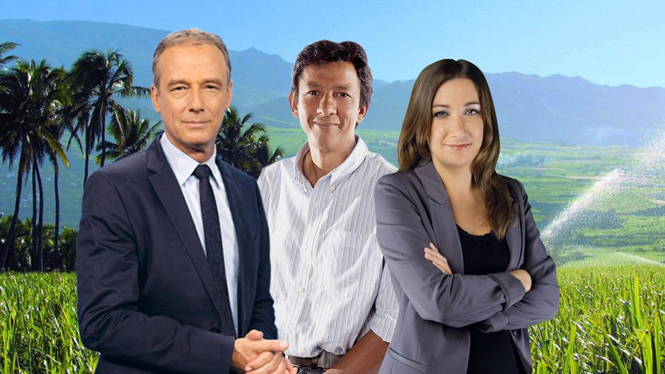 """Edition Spéciale: L'agriculture à l'honneur dans """"La Réunion Demain"""" sur les trois antennes de Réunion La 1ère, le 11 juin"""