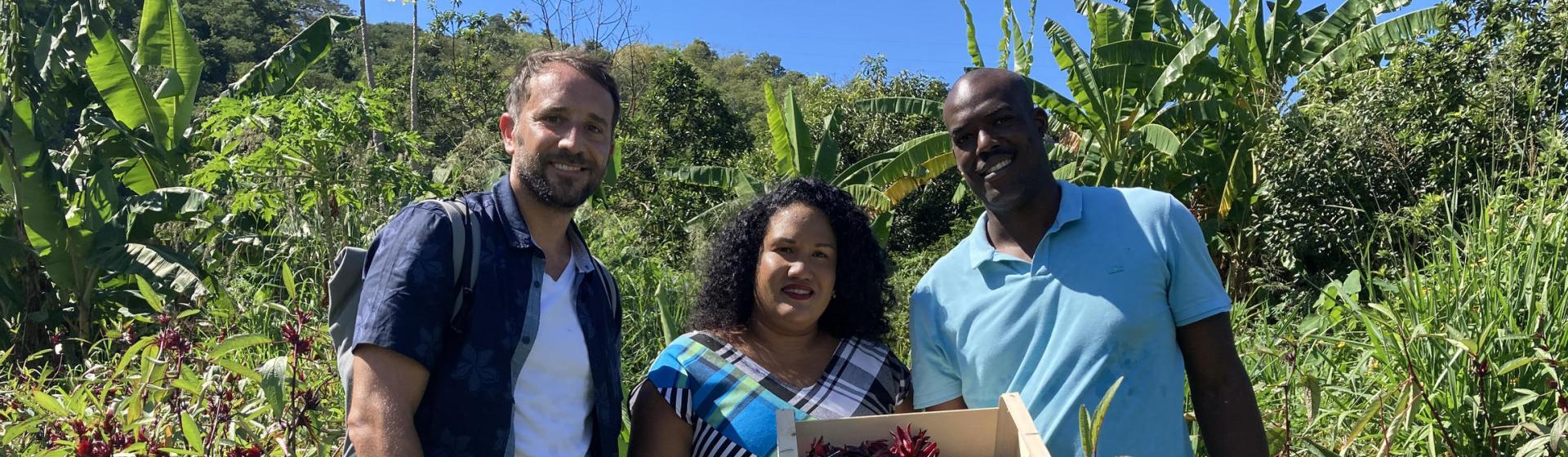La Guadeloupe gourmande à l'honneur ce samedi dans ECHAPPEES BELLES sur France 5