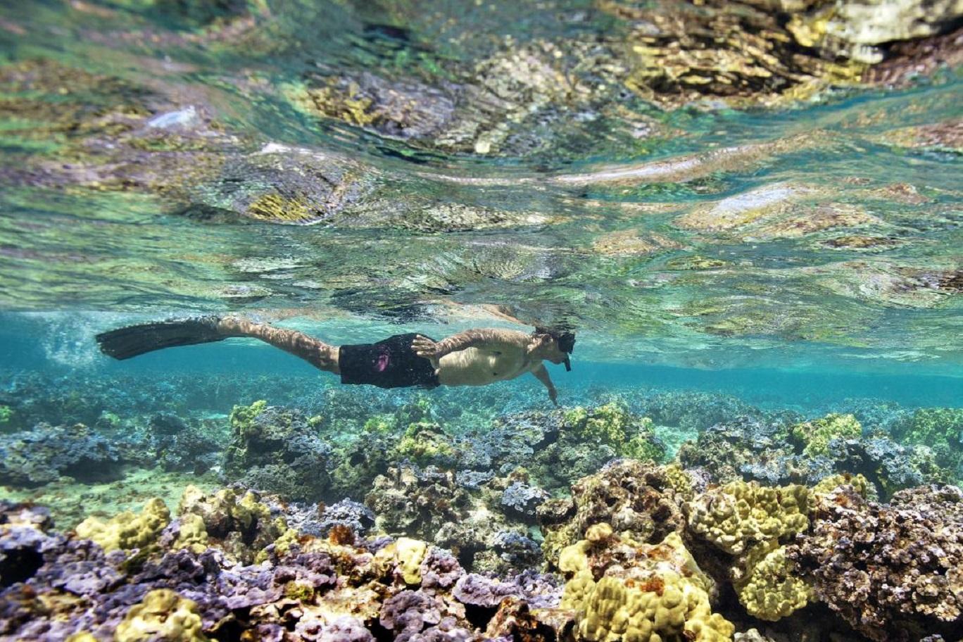 """Nouvelle-Calédonie La 1ère: Programmation spéciale """"24h sur l'Océan Pacifique"""" le 8 juin dés 06h45"""
