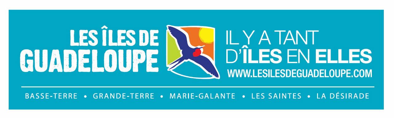 Les Îles de Guadeloupe remportent le Trophée du Web Social
