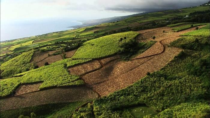 L'île de la Réunion au programme de Passion Outre-Mer, ce dimanche sur France Ô