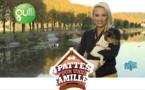 """Elodie Gossuin prend les commandes de """"Quatre pattes pour une famille"""", la nouvelle émission de Gulli"""