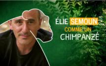Élie Semoun débarque sur Gulli le 3 décembre dans Comme un animal
