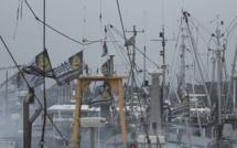 """""""Watt The Fish"""" le documentaire inédit sur la pêche électrique, le 6 juillet sur Ushuaïa TV"""