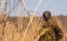 National Geographic Documentary Films annonce un nouveau court-métrage produit par James Cameron, « Akashinga ».