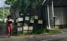 """""""Les filles du coin"""": Documentaire inédit sur les jeunes femmes de la Réunion en milieu rural sur Réunion La 1ère le 3 juin et France Ô le 4 juin"""