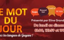 """""""Le mot du jour"""": Guyane La 1ère propose chaque jour d'apprendre les langues de Guyane"""