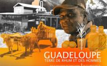 Le Rhum Guadeloupéen bientôt à l'honneur sur Canal+