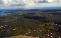 RFI et le pôle Outre-mer de France Télévisions s'associent à l'occasion du 60ème anniversaire du statut de Wallis-et-Futuna