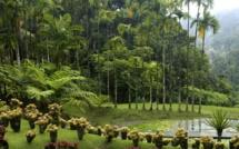 Le Monument Préféré des Français 2021: Diffusion le 15 septembre sur France 3, le Jardin de Balata (Martinique) en compétition