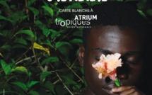 Festival Outre-Mer Veille: Une nouvelle édition dédiée à la création martiniquaise